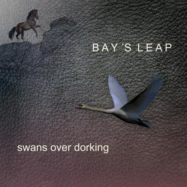 baysleap_large